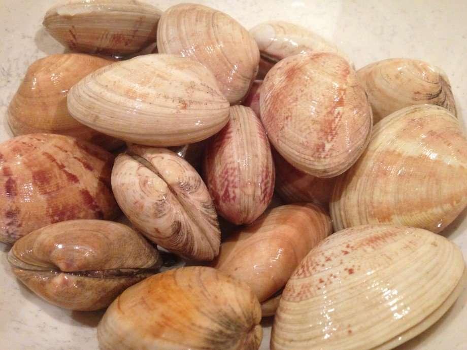 Fregola with clams and chorizo