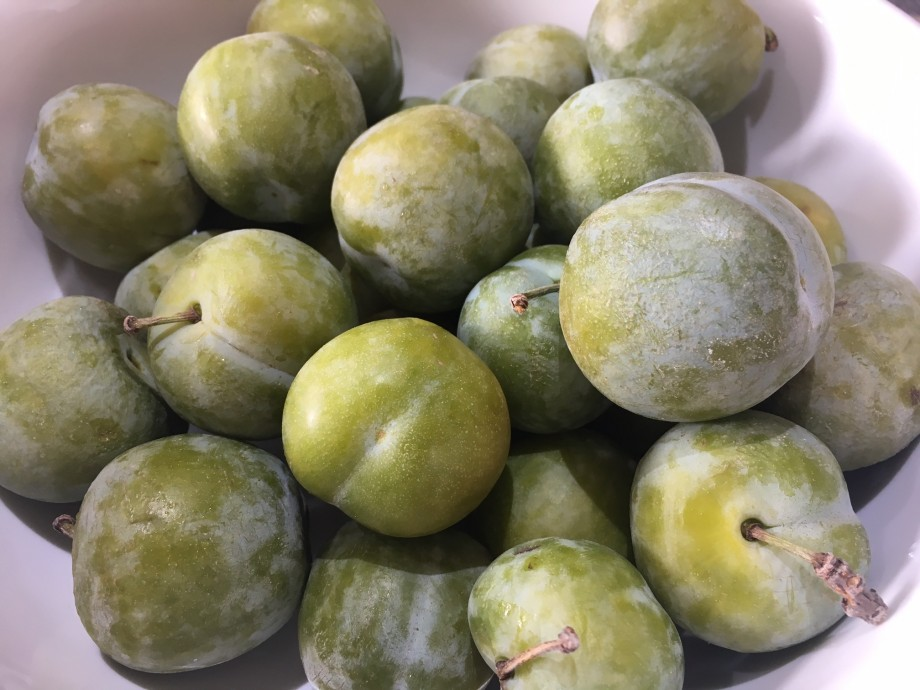Greengage Mess