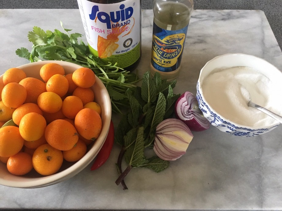 Kumquat Dipping Sauce